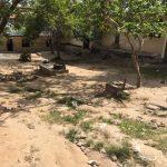 Midlands School Tanzania school yard